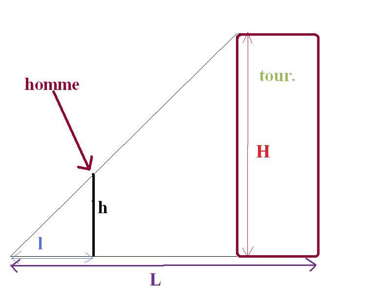 Dm taille de la tour de pise forum physique chimie 238642 - Taille de la tour de pise ...