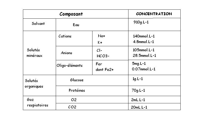 Quantité de matière et concentration molaire 1ère Physique